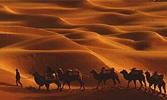 Muhadschir (Auswanderer aus Mekka)
